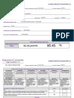 elm 490 clinical evaluation 2