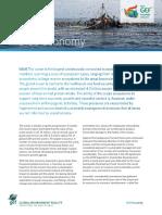 GEF Assembly BlueEconomy Factsheet 9.4.18 0 (1)