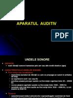 analizator auditiv