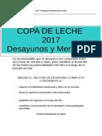 Copa de Leche 2017