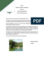 SCF II - AO - 04.pdf