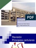 Revision Cartular 1