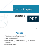The Cost of Capital Zhang