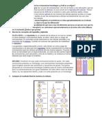 Cuestionario Ciclo Celular agraria la molina Biologia