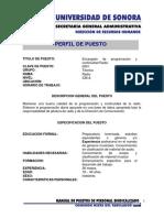 PERFIL DE PUESTO.pdf