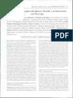 Biología de MycosphaereUa fljiensis Morelet y su Interaccióncon Musa spp.