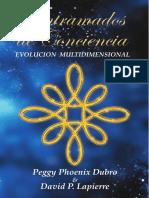 Entramados_de_Concienciaevolucion_multidimensional_desprotegido.pdf