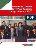 CGE_2017.pdf