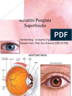 Keratitis Pungtata Superfisialis