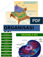 Full Organisasi Sel