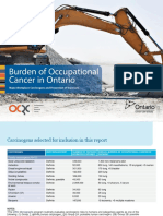 Occupational Cancer in Ontario