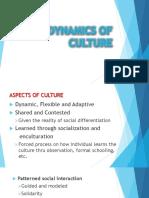CHapter 1 Culture - Part 2.pdf