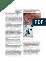 -Serigrafía•Antecedentes•Históricos-.pdf