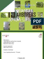 Guia de identificação de espécies florestais