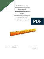 DERECHOS CONSTITUCIONAL.docx