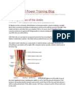 The Importance of the Ankle..docx