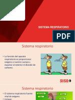 Clase 009 Sistema Respiratorio
