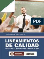2. lineamientos de calidad para licenciaturas.pdf