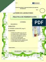 307908935-Informe-de-Fermentacion.docx