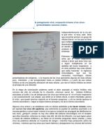 Clase 10. Generalidades de Patogénesis Viral.