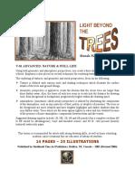 V01 - Light Beyond the Trees