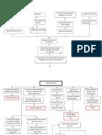 Pathway-Plasenta-Previa(1).doc