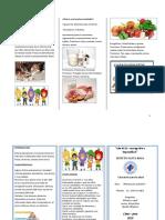 379348900 Triptico Alimentacion Saludable