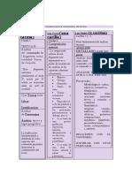 Formato Comentario de Textos IE Magister