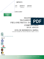 GRR_Pielonefritis_aguda.docx