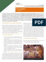 BIENESTAR ANIMAL.pdf