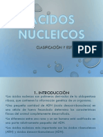 ácidos nucleicos  expoooo