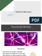Sistema Nervoso Neurônios