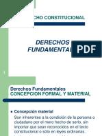 Tema 5 Los Derechos Fundamentales