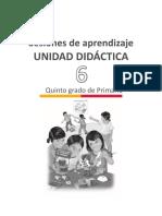 6 unidad-5to-grado.pdf