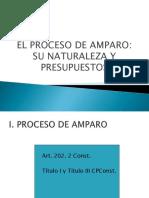 Tema 8 El Proceso de Amparo