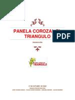 Panela Corozal El Triangulo 18 de Nov.