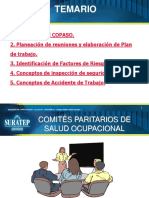CAPACITACION_COMITE_PARITARIO