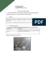 Informe de Química Contexto 2, Reconocimiento