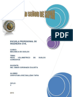 181973960-Peso-Volumetrico-de-Suelos-Cohesivos.docx