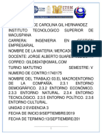 Gil Hernandez Dulce Carolina 3