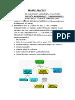 TRABAJO-PRÁCTICO-medicina-legal.docx