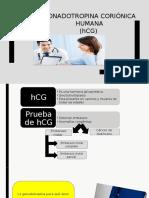 Gonadotropina coriónica humana  10.pptx