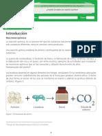 Material Del Estudiante_Reacciones Quimicas