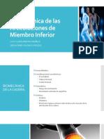 Biomecánica de Las Articulaciones de Miembro Inferior. (2)