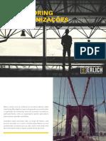 O-poder-do-mentoring-nas-organizacoes-Erlich.pdf