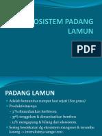 Ekosistem Padang Lamun
