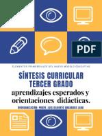 APRENDIZAJES Y ORIENTACIONES TERCER GRADO.pdf