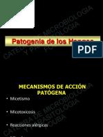 5.3-patogenia-micotica (3).pdf