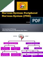 4 Sistem Saraf (PNS) MA