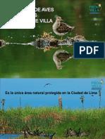 EDAM - Pantanos de Villa.pdf